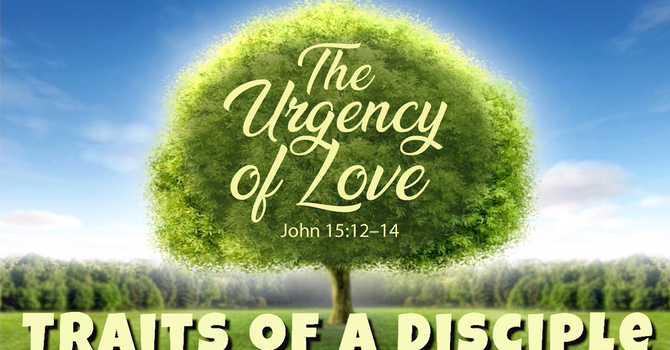 Urgency of Love