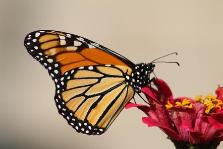 Shift Happens: The Spirituality of Change