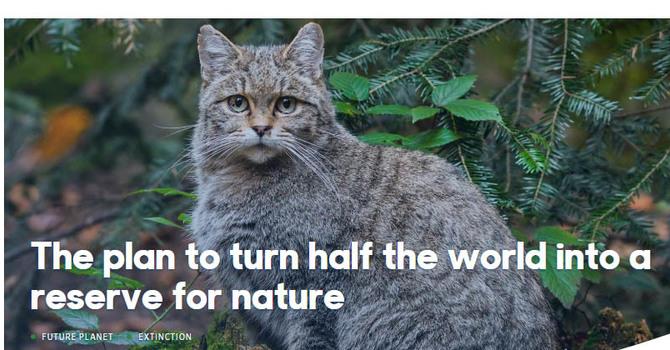 BBC Future Planet Article