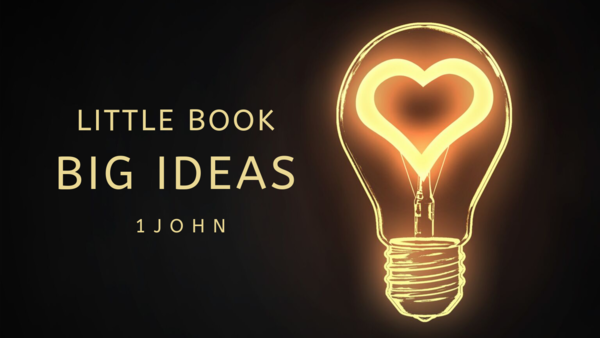 little book BIG IDEAS
