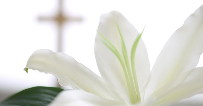 Join us for Holy Week & Easter at St. M & St. L! image