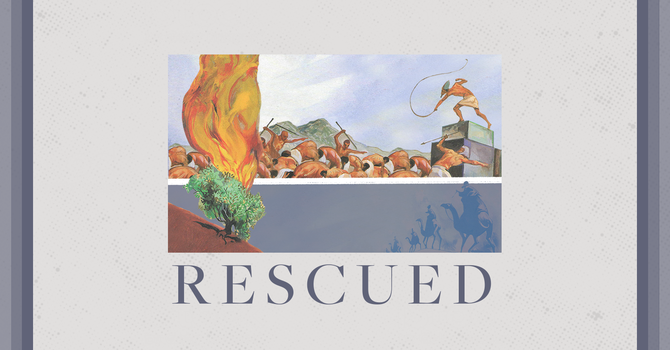 Life Group Curriculum - Rescued, God Sends, Wk 2 image