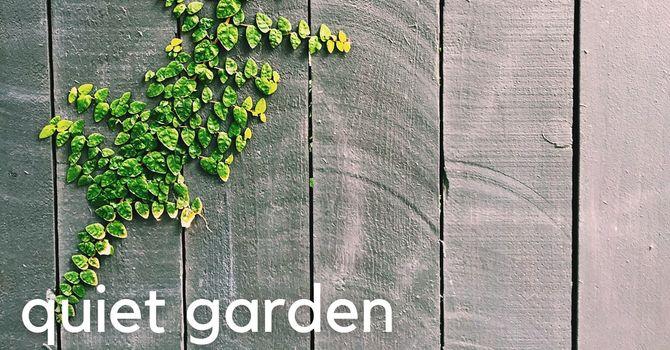 New bench in the quiet garden image
