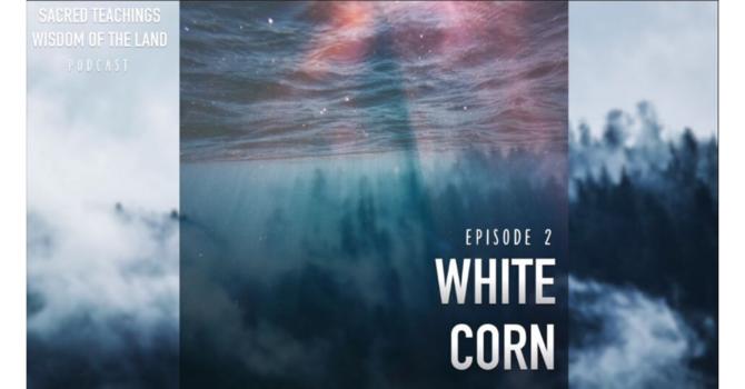 Episode 2: White Corn