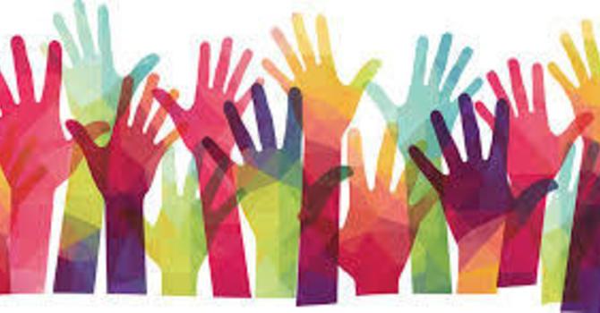 Our Volunteer Network