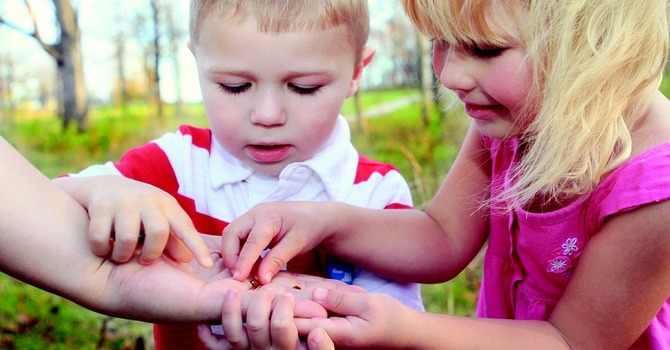 Full-day Childcare Programs