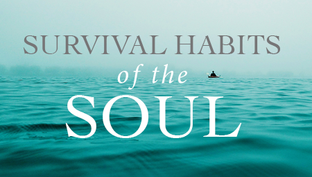 Survival Habits of the Soul