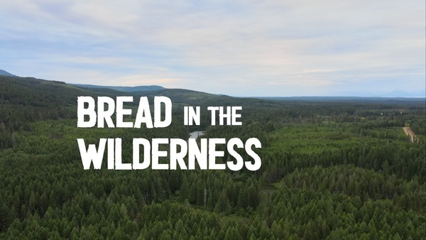 Bread in the Wilderness