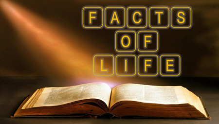 Facts of Life - Coming in Spring 2019