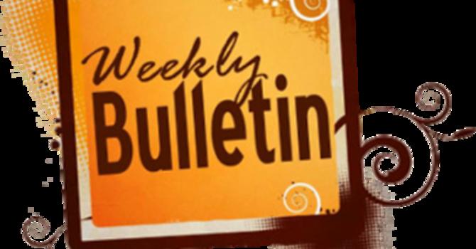 St. Johns Weekly Bulletin - September 26, 2021 image