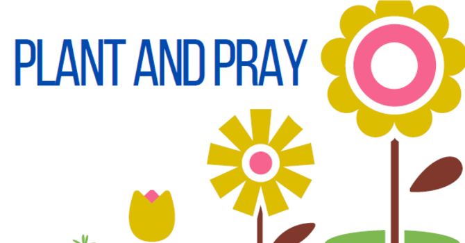 PLANT AND PRAY image