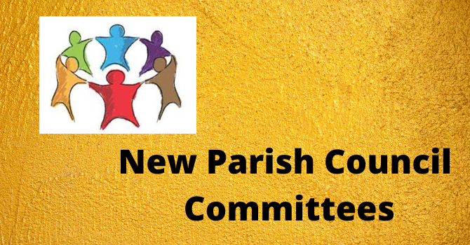 New Committees at St. Andrew image