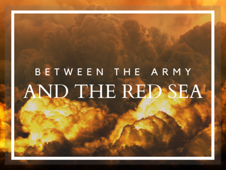 Between the Army and the Red Sea