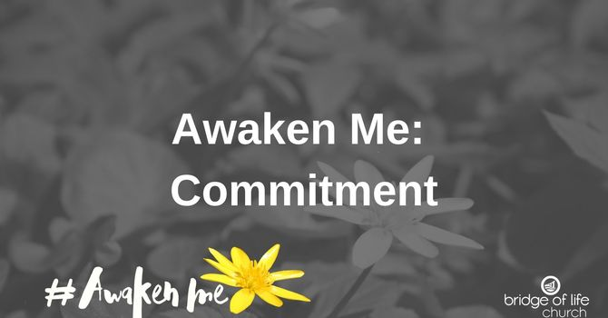 Awaken Me: Commitment