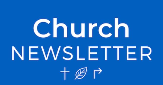 Saint Catherine's Summer Newsletter 2020  image