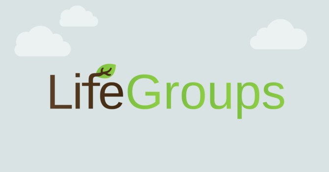 Life Groups Sign up! image