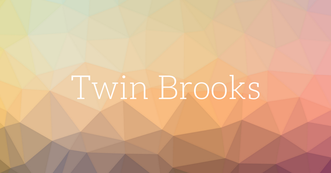 Twin Brooks