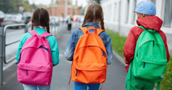 The 2020 Backpack project image