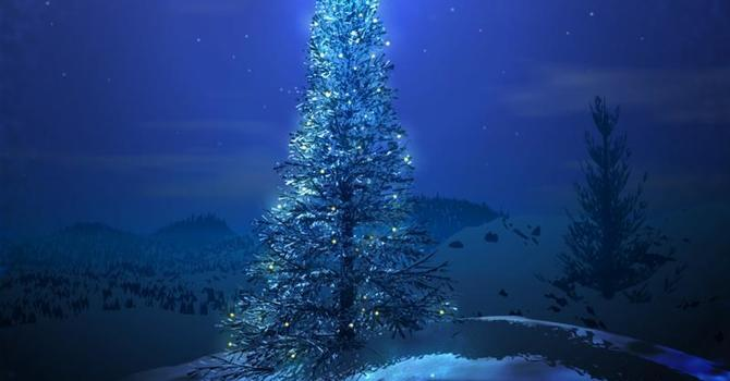 Davenport Update: Christmas 2013 News image