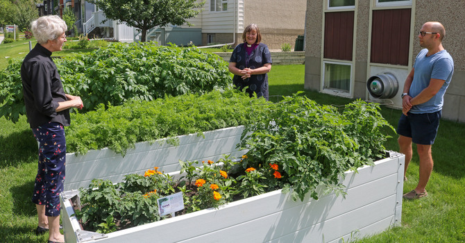 Blessing of St. David's Community Garden image