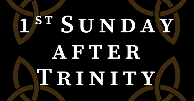 Bulletin: 1st Sunday After Trinity image