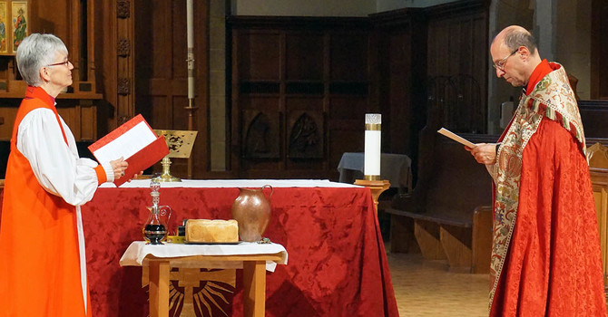Celebration of a New Ministry at Diocesan Cathedral image