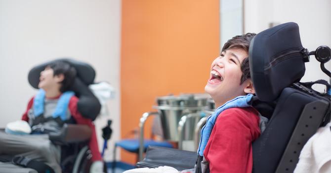 Wellness & Special Needs