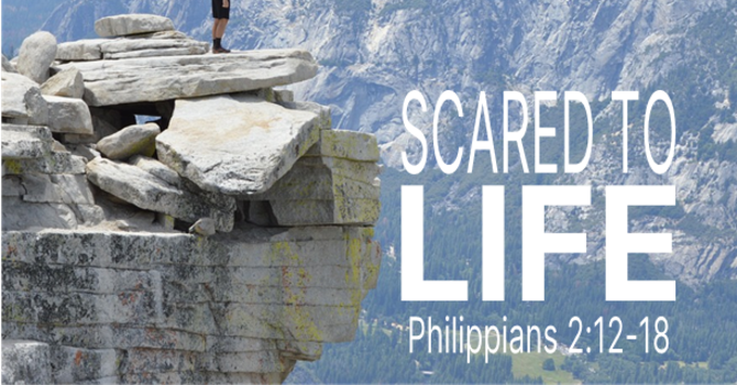 Scared to Life