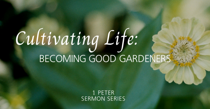 Cultivating Life: Becoming Good Gardeners