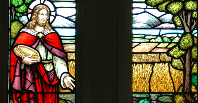 Jesus as the Sower image