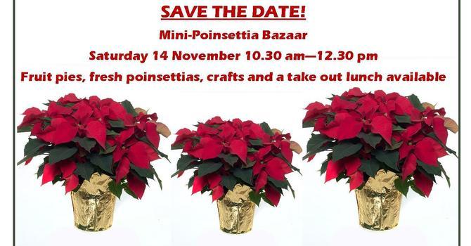 Mini-Poinsettia Bazaar