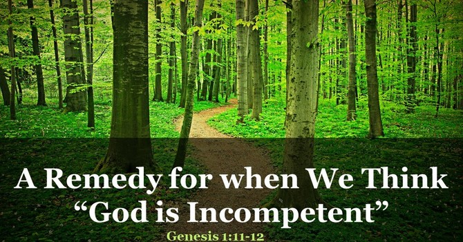 """A Remedy for when We Think """"God is Incompetent"""""""