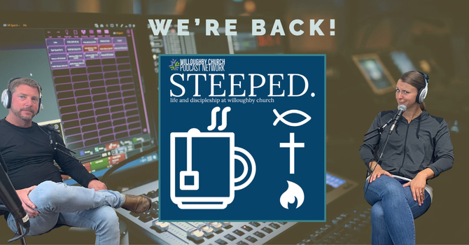 Steeped is back! image