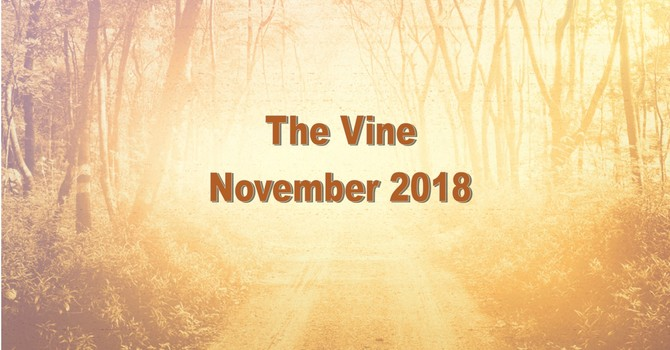 The November Vine image