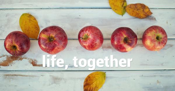 Life, Together
