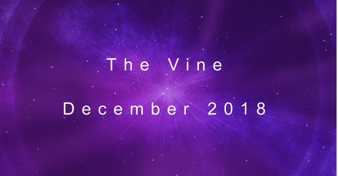 The December Vine image