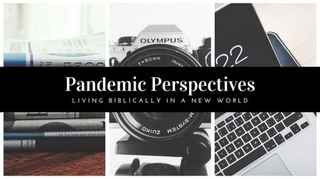 Pandemic Perspectives