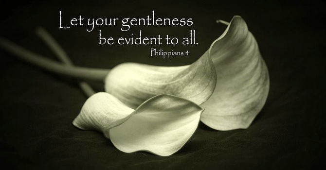 Letting Gentleness Be Evident  image