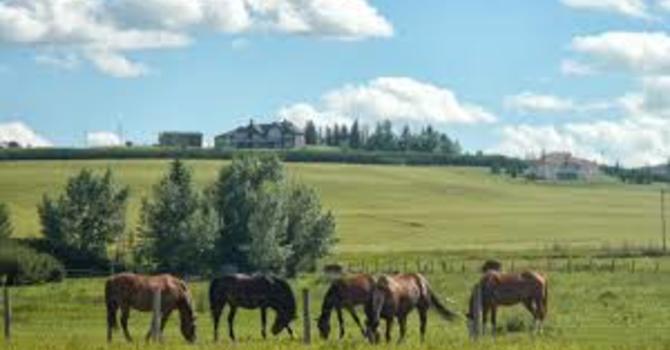 Calgary & Greater Calgary Region