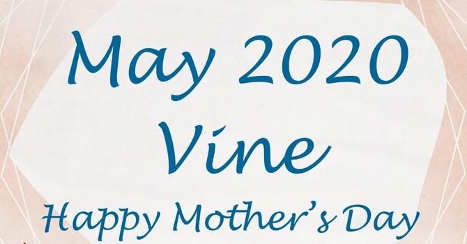 May Vine image