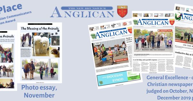 NB Anglican scores big at annual awards ceremony image