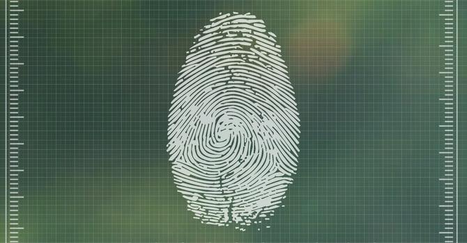 Identity image