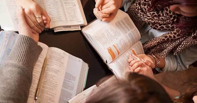 Bible Study  圣经学习
