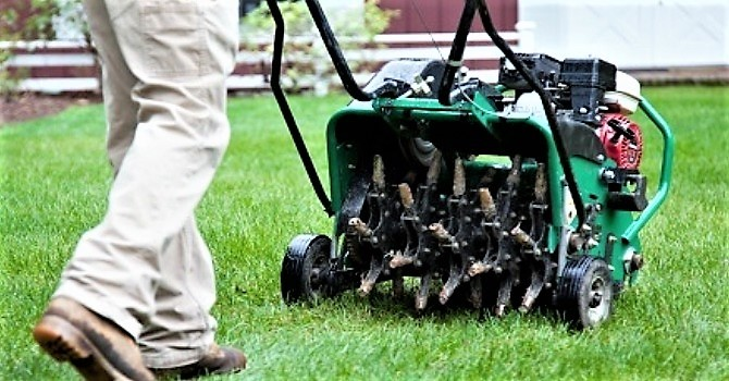 Does Your Lawn Need A Breather? image