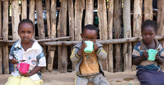 Soup mix to Ethiopia image
