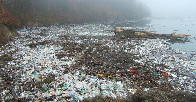 Avoid Single-use Plastics