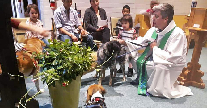 Parkland Pets Given Messy Church Blessing image