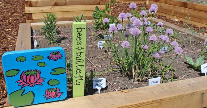 Calling All Urban Gardeners! image