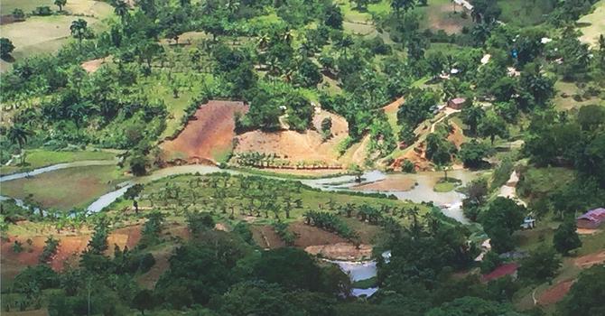 Colourful Calendar Celebrates SJE's Haiti Partnerships