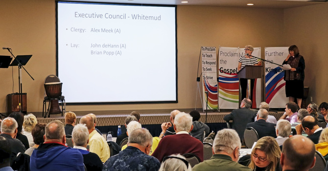 Diocesan Executive Council Election Results image